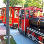 electric big train for adults
