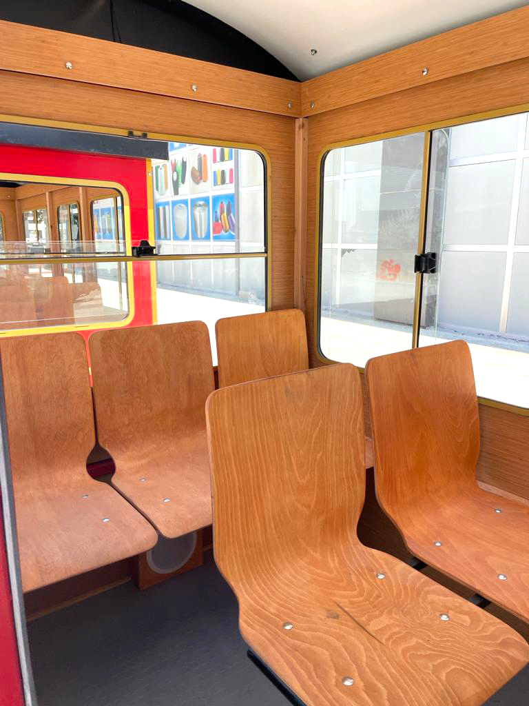 electric train for adult
